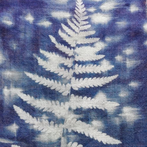 Fern cyanotype on cotton
